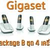 Gigaset Virtual PBX Package B