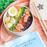 กล่องเบนโตะญี่ปุ่น รุ่นดอกซากุระ - Cherry Blomsom Collection Bento Box