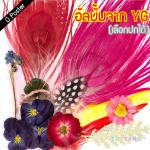 """[PRE-ORDER] TAEYANG - 3rd Album """"WHITE NIGHT"""" (RED Ver.)"""