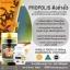 2 กระปุกใหญ่ (300 เม็ด) Propolis Nubolic 2,500mg ช่วยลดสิว ป้องกันการเกิดสิว ต้านภูมิแพ้ เพิ่มภูมิต้านทาน ไม่ให้ป่วยง่าย พรอพโพลิส จากธรรมชาติ 100% จากออสเตรเลีย ส่งฟรี EMS thumbnail 5