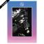 """[PRE-ORDER] BOYFRIEND - 5th Mini Album """"NEVER END"""" (NIGHT Ver.)"""