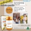1 กระปุกเล็ก (30 เม็ด) นมผึ้ง นูโบลิค Nubolic Royal jelly สดจากออสเตรเลีย พรีเมียมคุณภาพสูง ส่งฟรี EMS thumbnail 6