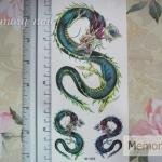 YM-X258 สติ๊กเกอร์ลายสัก tattoo ลายมังกร 18 x 7 cm
