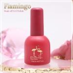 สีเจลทาเล็บ Flamingo ชุด 45 สี พร้อมอัลบั้มสีสวยๆ พร้อมทาสีให้เสร็จ พร้อมเปิดร้าน คุ้มสุดๆ แถม Base และ Top ด้วย