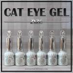 สีเจลทาเล็บ ZYZC สีแม่เหล็ก ชุด 6 สี MEGIC cat eye gel polish
