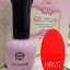 เจลสีทาเล็บ BSN สีสะท้อนแสง thumbnail 8