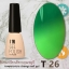 สีเจลเปลี่ยนสีตามอุณหภูมิ I'M Temperature Change Color Gel Nail Polish thumbnail 26