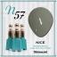 สีเจลทาเล็บ NICE สีสวยขวดสวย ยกเซ็ต 81 สี แถมอัลบั้มฟรี 1เล่มใหญ่ thumbnail 64