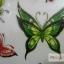 YM-X139 สติ๊กเกอร์ลายสัก tattoo ลายผีเสื้อ18 x 7 cm thumbnail 5
