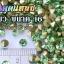 เพชรตูดแหลม สีเขียว ซองเล็ก เลือกขนาดด้านในครับ thumbnail 5