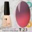 สีเจลเปลี่ยนสีตามอุณหภูมิ I'M Temperature Change Color Gel Nail Polish thumbnail 23