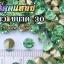 เพชรตูดแหลม สีเขียว ซองเล็ก เลือกขนาดด้านในครับ thumbnail 7