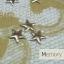 หมุดติดเล็บ รูปดาว เลือกแบบด้านใน thumbnail 2