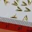 โลหะติดเล็บ สี เงิน ทอง รหัส OT เลือกแบบด้านใน thumbnail 17