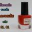 สีสำหรับปั้มลายเล็บ ขวดเล็ก ขนาด 8ml thumbnail 6