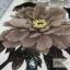 YM-X226 สติ๊กเกอร์ลายสัก tattoo ลายดอกไม้ 18 x 7 cm thumbnail 3