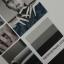 สีทาเล็บเจล EN.OU ยกเซ็ต 12ขวด โทนสีเทา GRAY SYSTEM thumbnail 3