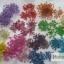 ดอกไม้แห้ง เป็นช่อ 12 สี thumbnail 10
