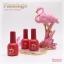 สีเจลทาเล็บ Flamingo ชุด 45 สี พร้อมอัลบั้มสีสวยๆ พร้อมทาสีให้เสร็จ พร้อมเปิดร้าน คุ้มสุดๆ แถม Base และ Top ด้วย thumbnail 2