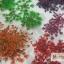 ดอกไม้แห้ง เป็นช่อ 12 สี thumbnail 9