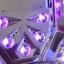 เครื่องอบเจล LED CHUJIE รุ่น K1 ขนาด 35วัตต์ สีขาวมุข thumbnail 41