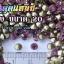 เพชรตูดแหลม สีม่วง ซองใหญ่ เลือกขนาดด้านในครับ thumbnail 7