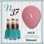 สีเจลทาเล็บ NICE สีสวยขวดสวย ยกเซ็ต 81 สี แถมอัลบั้มฟรี 1เล่มใหญ่ thumbnail 44
