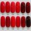สีทาเล็บเจล EN.OU ยกเซ็ต 12ขวด โทนสีแดง GLASS RED WINE thumbnail 1