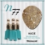 สีเจลทาเล็บ NICE สีสวยขวดสวย ยกเซ็ต 81 สี แถมอัลบั้มฟรี 1เล่มใหญ่ thumbnail 84