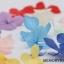 ดอกไม้แห้ง ดอกใหญ่ thumbnail 1