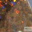 ฟอยล์ติดเล็บ รหัส SK Nails foils เลือกสีด้านใน ขนาด 4X40 เซน thumbnail 17