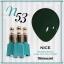 สีเจลทาเล็บ NICE สีสวยขวดสวย ยกเซ็ต 81 สี แถมอัลบั้มฟรี 1เล่มใหญ่ thumbnail 60