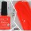 HACTR สีเจลทาเล็บ สีสวย เนื้อแน่น คุณภาพดี thumbnail 49