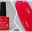 HACTR สีเจล สีสวย เนื้อแน่น คุณภาพดี รุ่นที่ 2 thumbnail 6