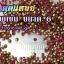 เพชรตูดแหลม สีชมพูเข้ม ซองใหญ่ เลือกขนาดด้านในครับ thumbnail 3