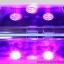 เครื่องอบเจล LED ใหญ่ ทรงไข่ มีจอดิจิตอล 45 วัตน์ สีขาว thumbnail 22