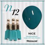 สีเจล NICE รหัส N-12