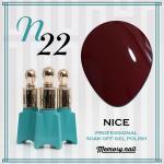 สีเจล NICE รหัส N-22