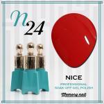 สีเจล NICE รหัส N-24