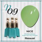 สีเจล NICE รหัส N-09