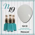 สีเจล NICE รหัส N-19