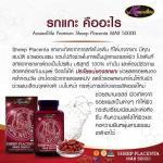 รกแกะ Sheep Placenta MAX 50000 mg Auswelllife เพื่อผิวอ่อนวัย