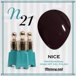 สีเจล NICE รหัส N-21