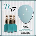 สีเจล NICE รหัส N-17