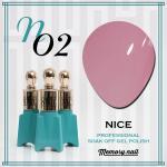 สีเจล NICE รหัส N-02