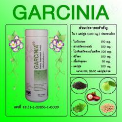 Garcinia การ์ซิเนีย