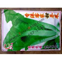 เมล็ดผัก ผักกาดขาว ต้นเล็ก