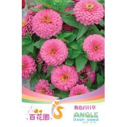 เมล็ดพันธุ์ดอกไม้ (ดอกบานชื่น) ชนิดซอง)