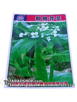 เมล็ดพันธุ์ผัก ผักคะน้า ดอก (ชนิดซอง)