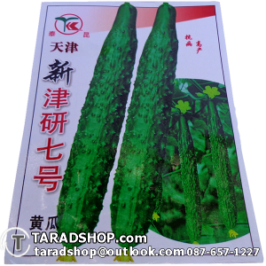 เมล็ดพันธุ์ผัก แตงกวาเกาหลี (ชนิดซอง)
